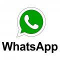 Whatsapp spy 1